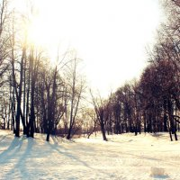 Russian winter :: Андрей Малик