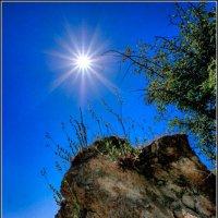 Звезда по имени Солнце :: Андрей Ясносекирский