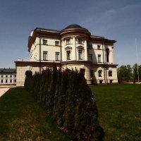 дворец Разумовского :: Виктор Николенко