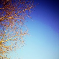 Небо :: Натали V