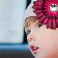 Цветок :: Катерина А.