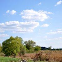 Landscape :: Lera Komisarchuk