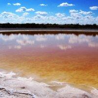 Оранжевое озеро :: Владимир Богославцев(ua6hvk)