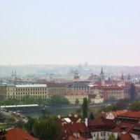 Туман над Прагой :: vik zhavoronka