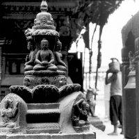 Катманду :: Мяу Мяу