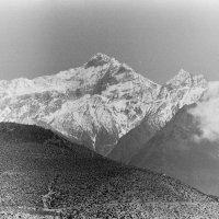 Нижний Мустанг, Гималаи :: Мяу Мяу