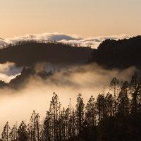 Закат над облаками :: Evgeny Donskov