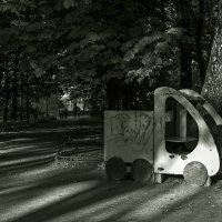В осеннем парке.. :: Владимир Питерский