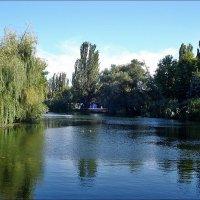В Гагаринском парке :: Нина Корешкова