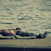 Быть свободным в Амстердаме :: Алексей Соминский