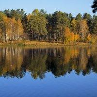 Осень пришла :: Анатолий Иргл