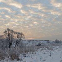 Утреннее небо. :: Анатолий Круглов