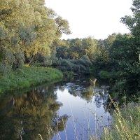 Река в лесу :: Юрий Пузанов