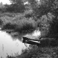 Спуск к реке :: Юрий Пузанов