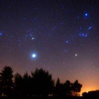 Созвездие Орион :: Sergei Leibenson