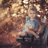 Пикник у дороги :: Natalia {Belkafoto} Gurevich