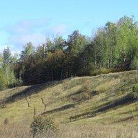 На склоне холма. :: Борис Митрохин