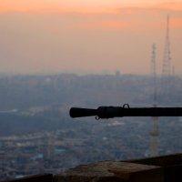 Алеппо (Халеб). Сирия :: Дмитрий Кияновский
