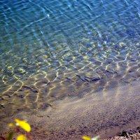Осень. Вода :: Арина Минеева