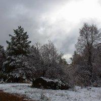 После снегопада :: Анатолий Иргл