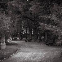 Осеньняя тоска :: Рома Григорьев
