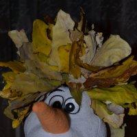 из осени в зиму :: Таня Фиалка