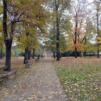 Только осень :: Ольга