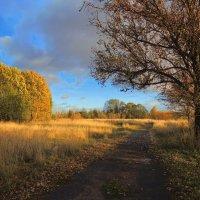 Из серии:мои любимые дороги.Осень золотая :: Павлова Татьяна Павлова