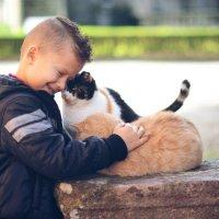 Любите животных... :: Natalia Kalyva
