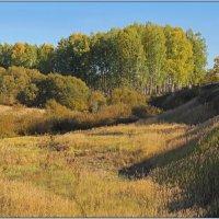 Пейзаж с осенью. :: Роланд Дубровский