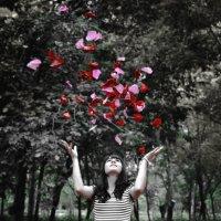 Красота цветов :: Алексей Глашкин