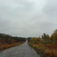 Дороги, которые мы выбираем :: Антонида Михайлова
