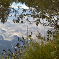 Облака в воде :: Людмила Якимова
