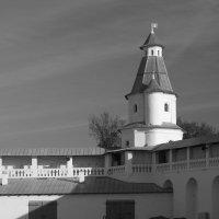 Монастырские стены :: Светлана