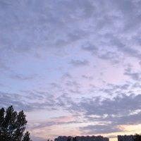 Игра цвета :: Ольга Гукова