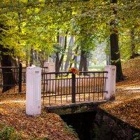 Мост :: Женечка Зяленая