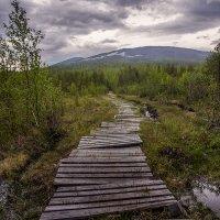 Путь :: Игорь Чубаров