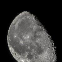 Луна .луна :: Николай Сапегин