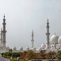 ОАЭ 2015 Абу Даби.мечеть шейха Заида 5 :: Arturs Ancans