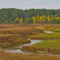 Зигзаги реки. :: Виктор Евстратов