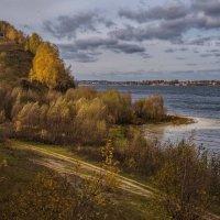 Носит листья осень :: Владимир Макаров