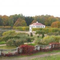 Осень в Петергофе :: Наталья