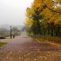 осень в тумане :: Светлана З
