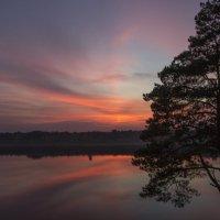 Розовые облака на Ветлуге :: Андрей Костров