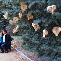 Бумажная свадьба ) :: Райская птица Бородина
