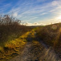 Дорога дальняя, дальняя... :: Oleg Akulinushkin