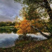 Осень :: GaL-Lina .