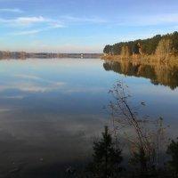 У озера) :: Владимир Звягин
