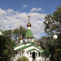 комсомольский сад :: Владимир Юдин