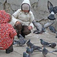Идут на контакт. :: Николай Масляев